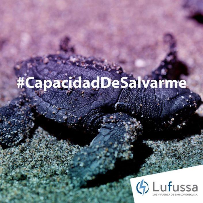 #CapacidadDeSalvarme