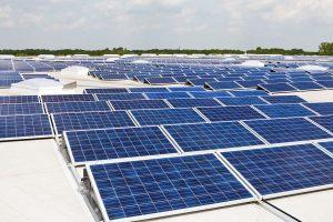 Los paneles solares en el desarrollo tecnológico sustentable