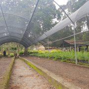 En un 95% se encuentran avanzados los trabajos de construcción del vivero que la empresa Lufussa - fundada por los hermanos Schucry, Luis y Eduardo Kafie- construye en el Parque El Picacho
