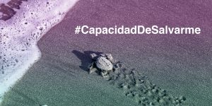 #capacidadesalvarme